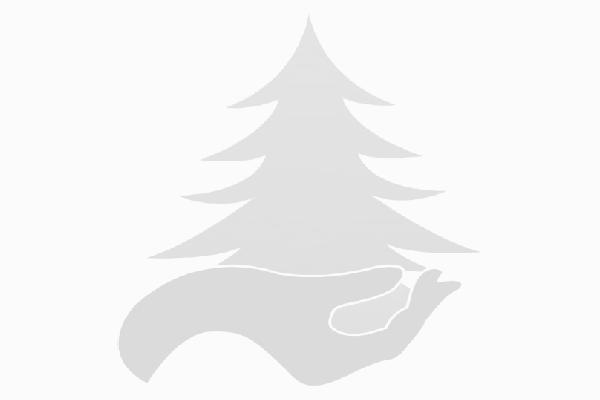 Towarzystwo Ekologiczne Puszczy Pyzdrskiej